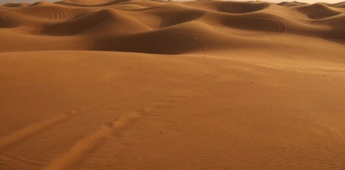 deserto-caracteristicas-3